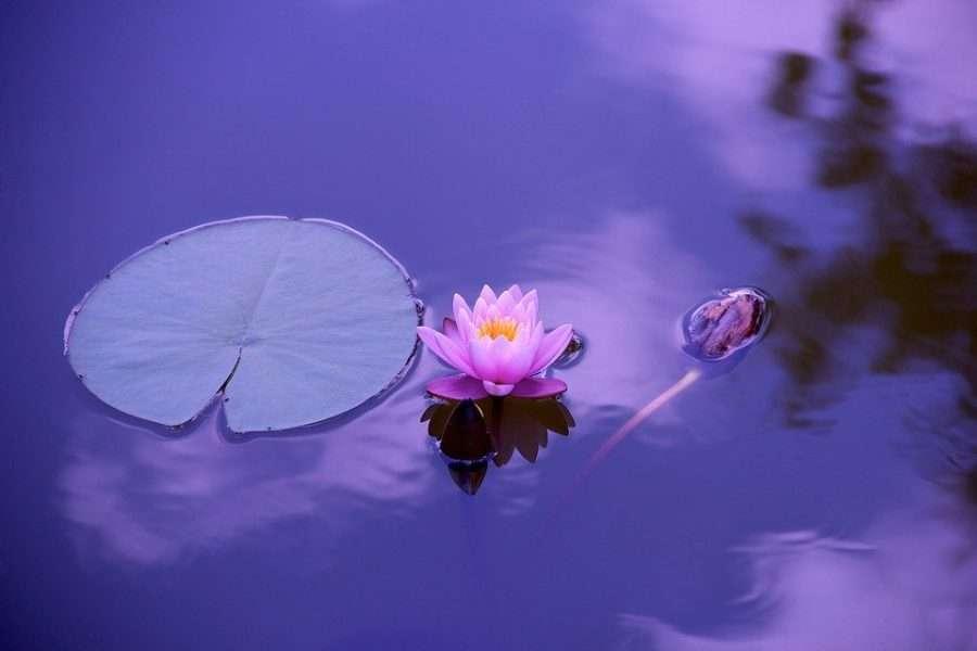 benefit mind with meditation